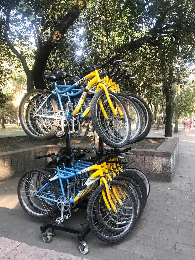 Parking of blue and yellow rent bicycles in two rows against the background of the street and trees. Close-up royalty free stock images
