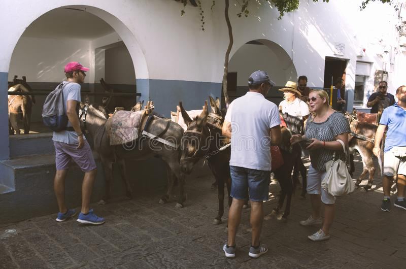 Parking donkeys in Lindos to visit the Acropolis. Lindos, island of Rhodes, Greece - 18 September 2017: Tourist animatedly talking to a donkey driver. Parking royalty free stock photography