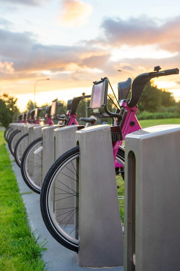 Parking of few modern bicycle for rental royalty free stock photography