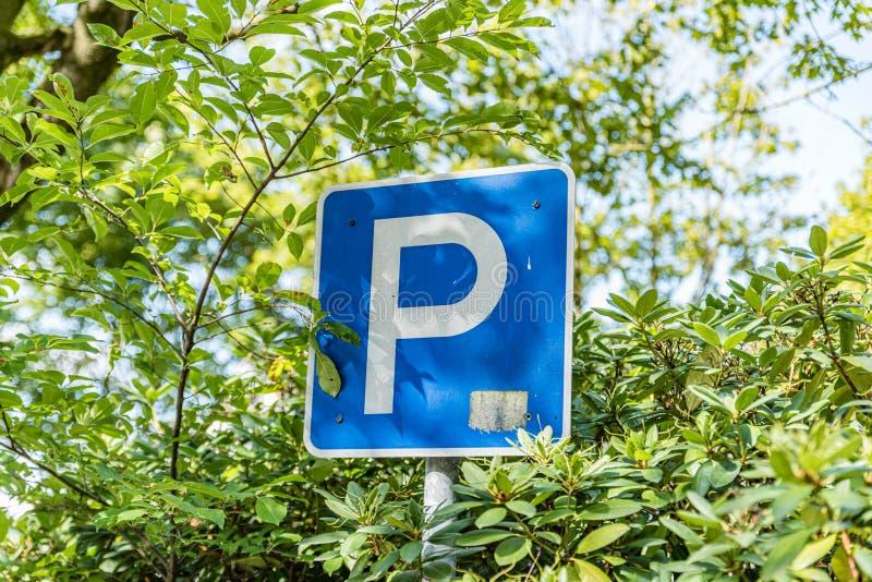 Parking grand P blanc sur un panneau bleu photographie stock libre de droits