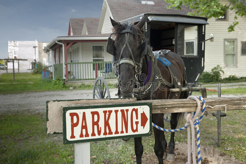 Parking horse and buggy stock photography