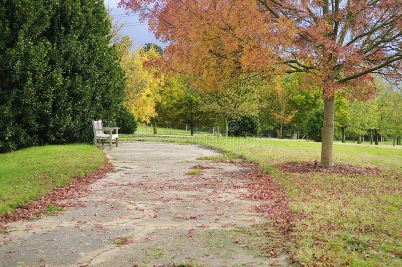 parkland английской языка осени стоковые изображения