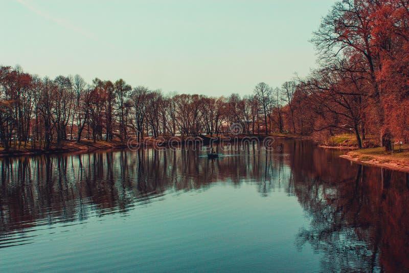 parkland photo libre de droits