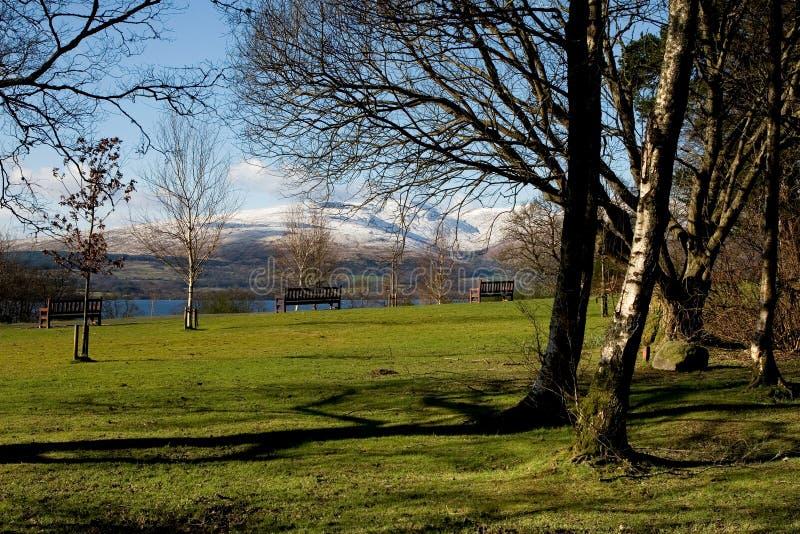 parkland zdjęcie royalty free