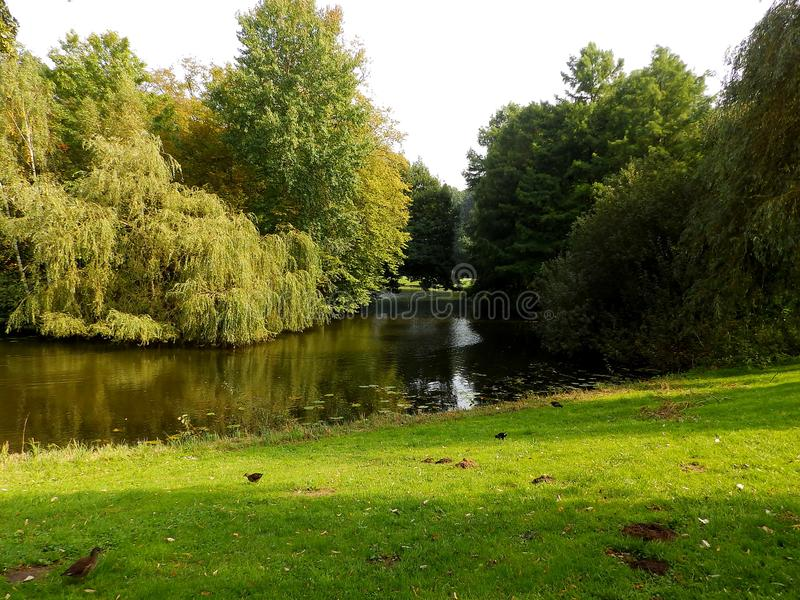 Parklandschaft in Deutschland 3 stockbild