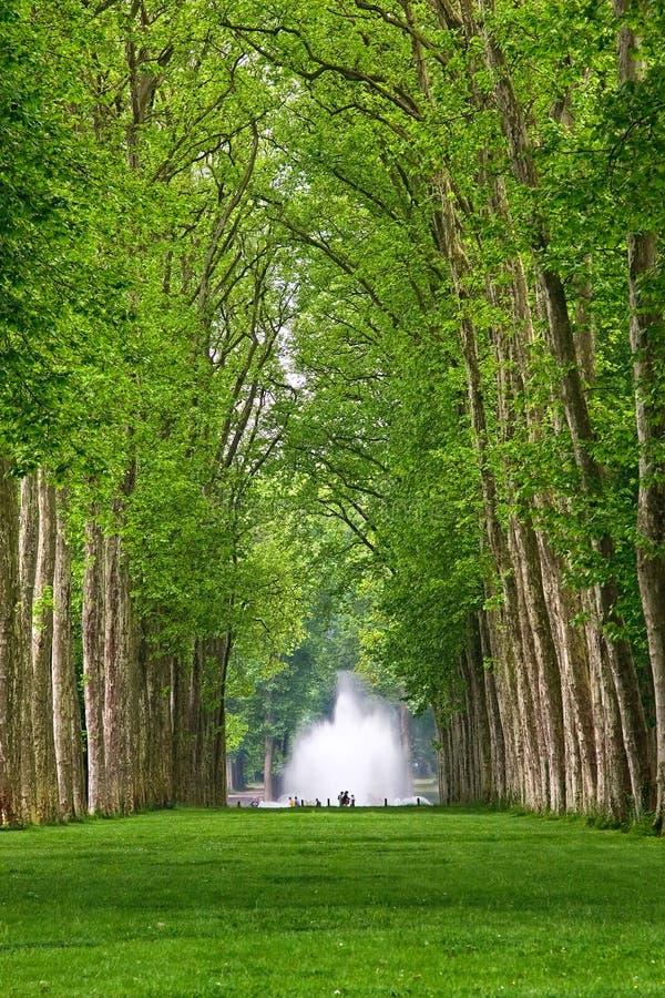 Parkof Versalles imagenes de archivo
