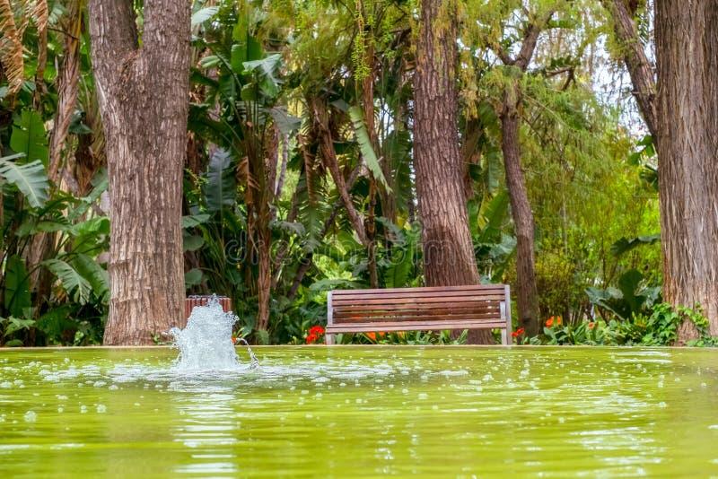 Parkowa ławka z fontanną fotografia stock