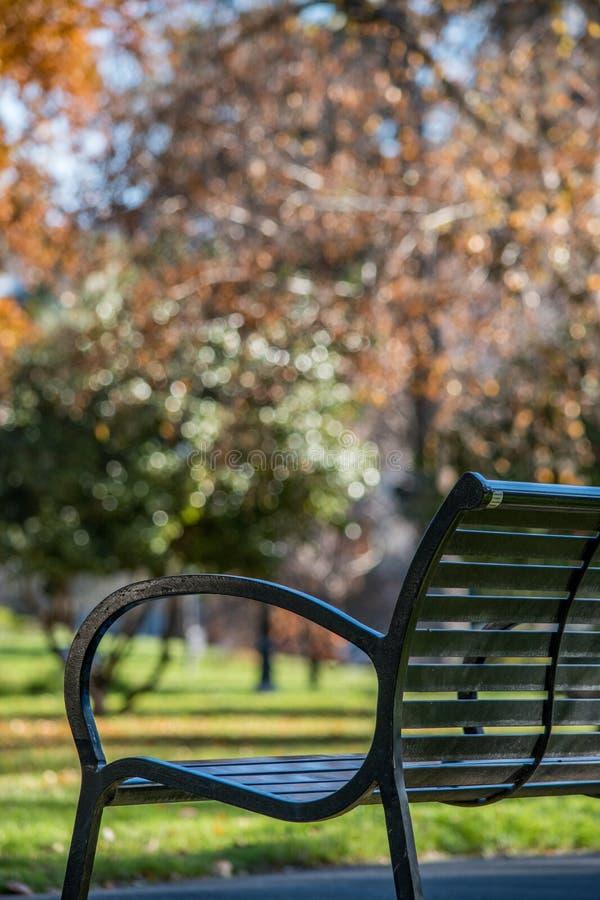 Parkowa ławka z spadku ulistnieniem obrazy royalty free