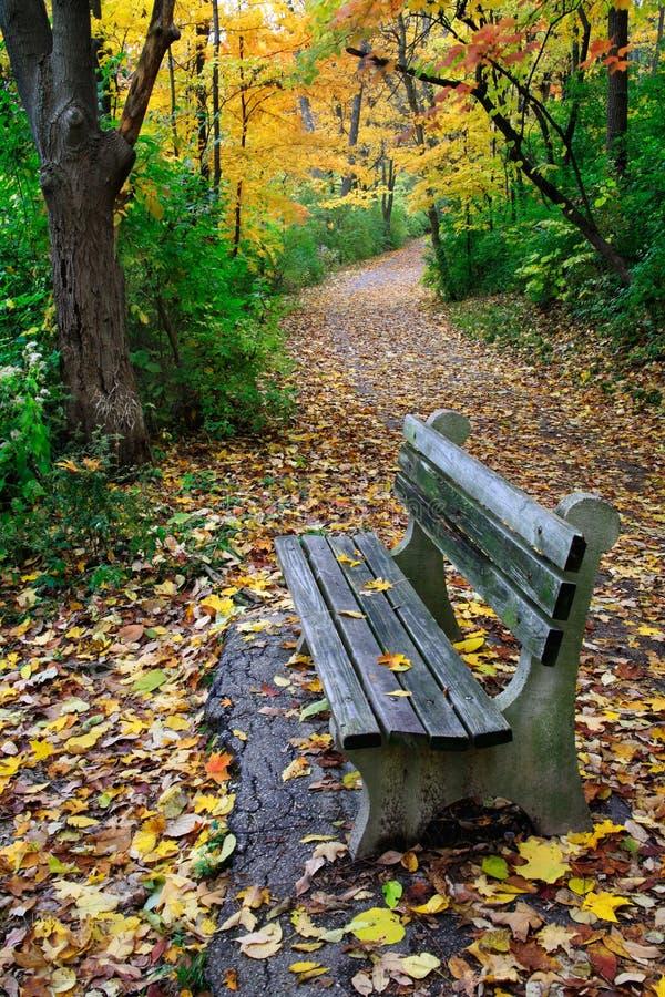 parkowa ławki ścieżka zdjęcie stock