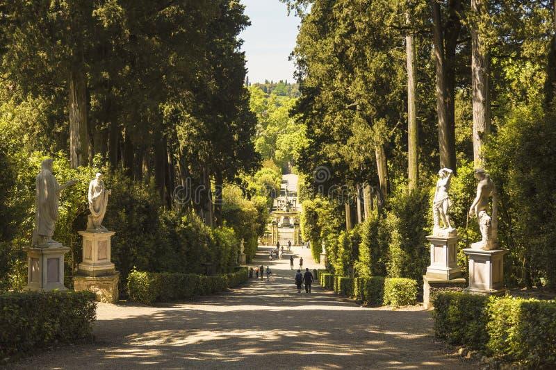Parkowa aleja z statuami w Boboli uprawia ogródek Florencja obraz stock
