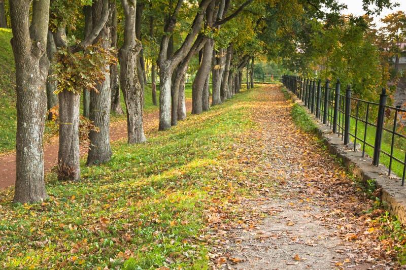 parkowa jesień ścieżka fotografia stock