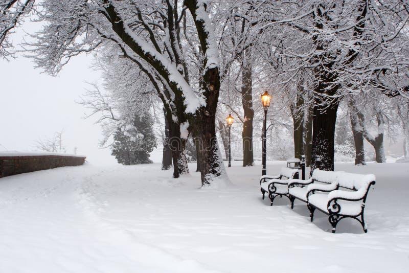 parkowa lampy zima obrazy royalty free