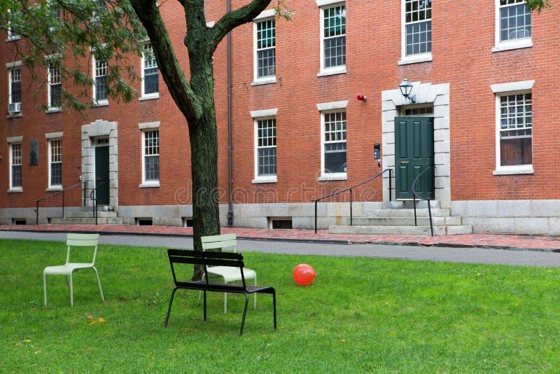 parkowy Cambridge uniwersytet obrazy stock
