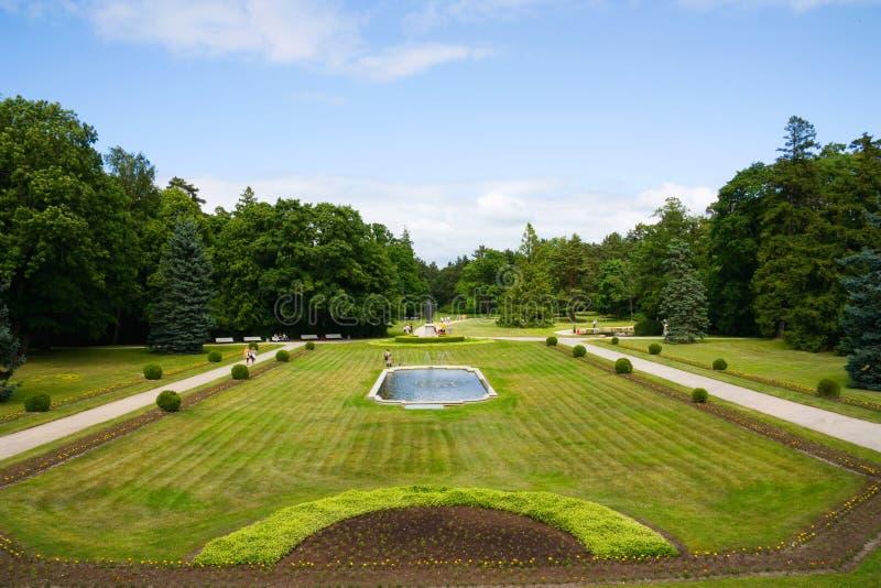 parkowy fontanny lato obraz stock