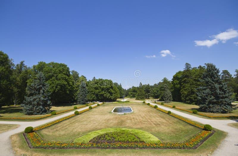 parkowy lato zdjęcia royalty free