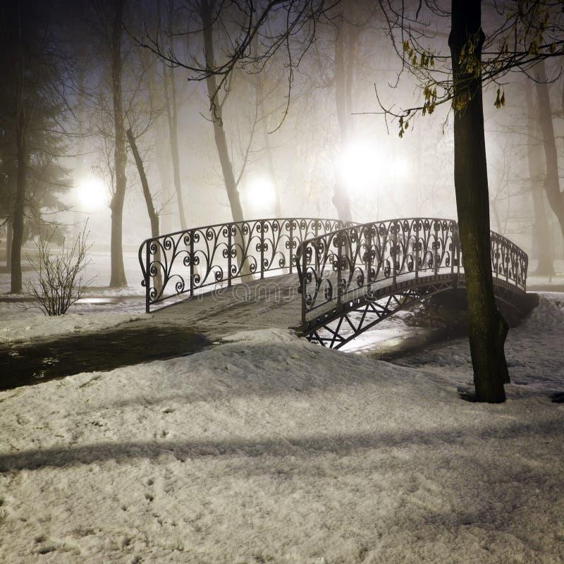 Parkowy most w zimie obraz royalty free