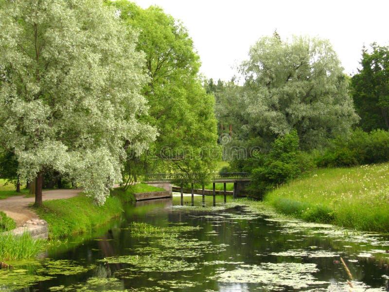 parkowy Pavlovsk obrazy royalty free
