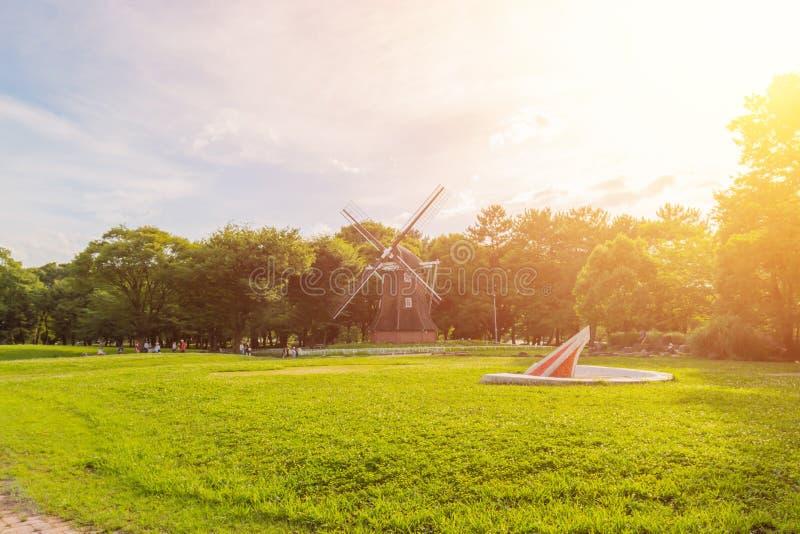 Parkowy plenerowy krajobraz z zieloną trawą obrazy royalty free