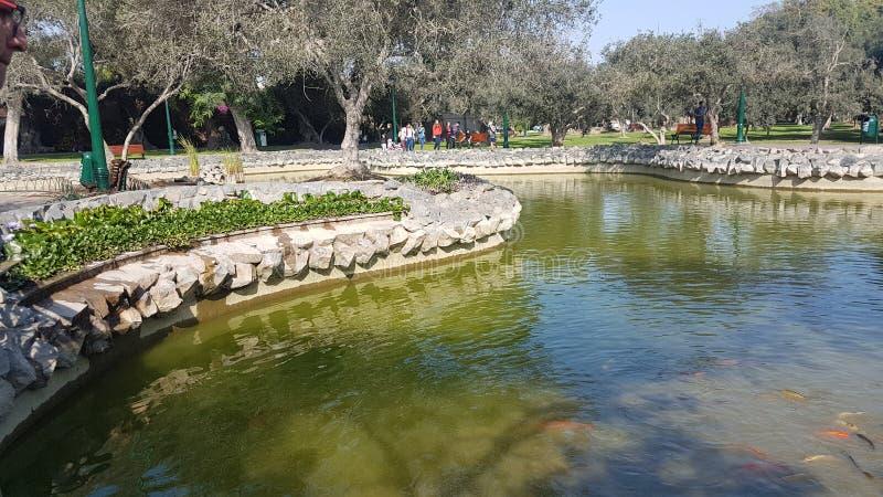 Parkowy San isidro Lima Peru obraz royalty free
