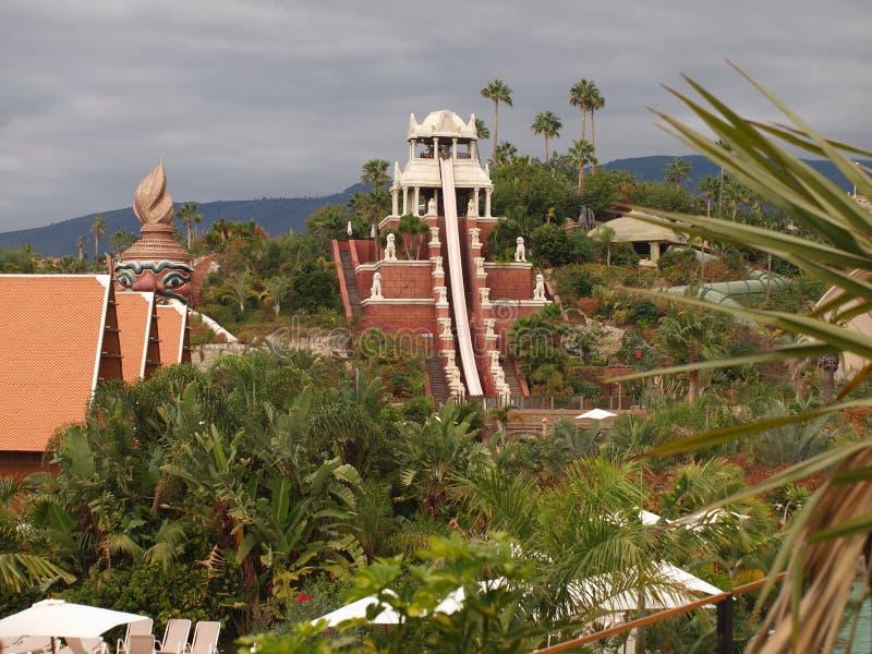 parkowy Siam Tenerife fotografia royalty free