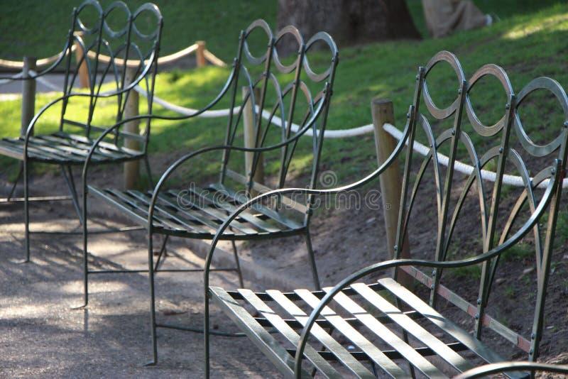 parkowy spacer zdjęcie royalty free