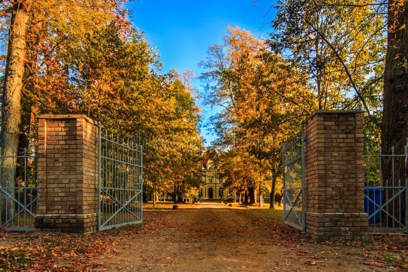 Parkowy wejście kasztel w jesieni z drzewami zdjęcia royalty free