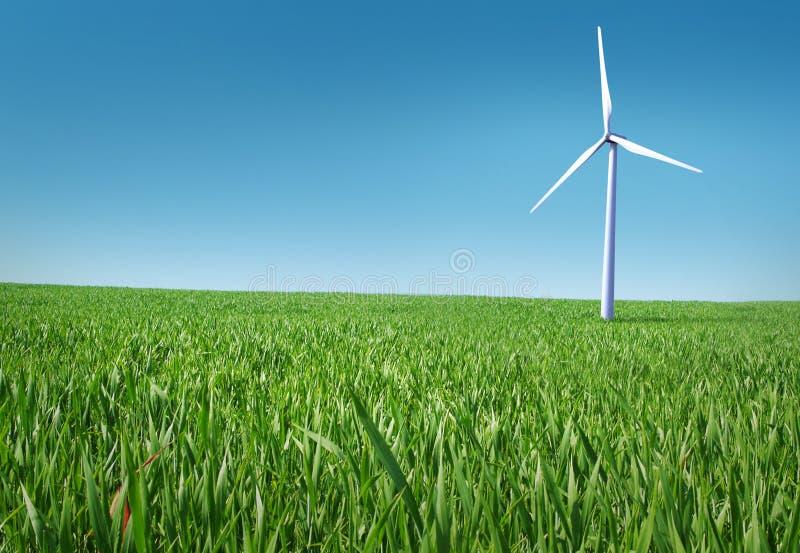 parkowy wiatr fotografia stock
