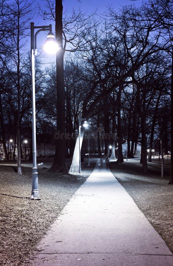 Parkpfad nachts lizenzfreie stockfotos
