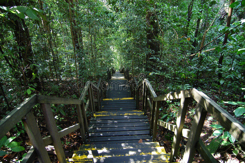 Download Parks With Staircase Royalty Free Stock Photo - Image: 1777505