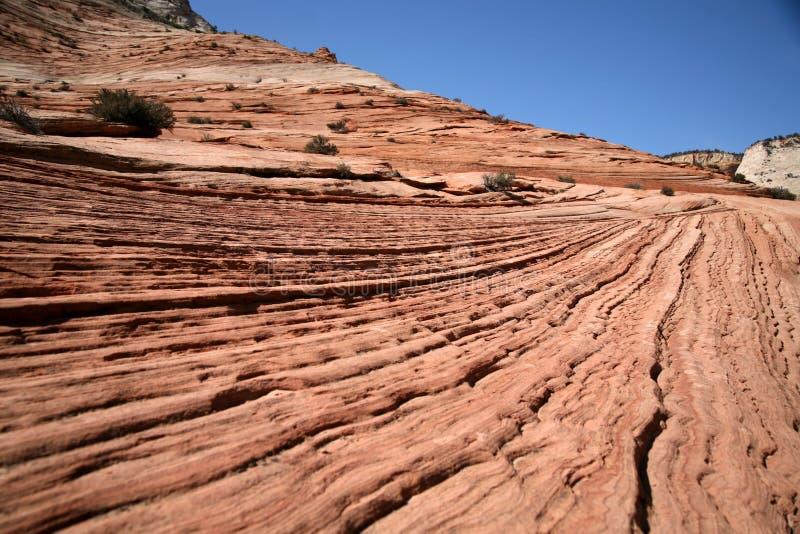 parku narodowego Utah zion fal obraz royalty free