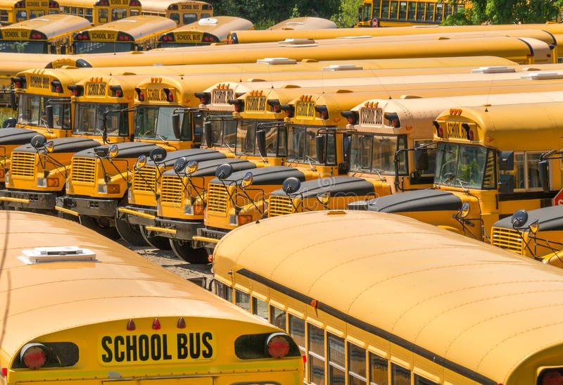 Parkujący Autobus szkolny - Autobusy fotografia stock