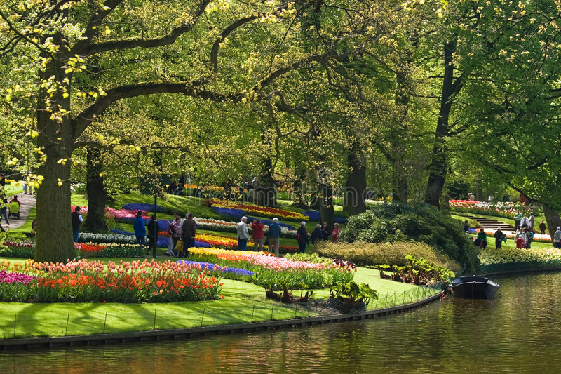 Parkview. Landscape in spring with trees and groups of tulips stock images