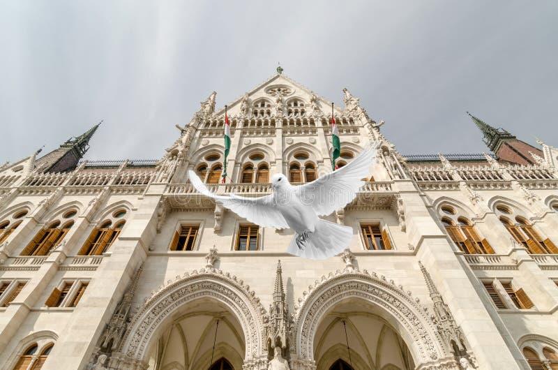 Parlamento Будапешт - вверх в воздухе стоковая фотография rf