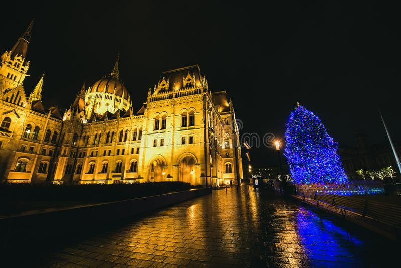 Parliament building and decorated in lights Christmas tree, Budapest stock photography