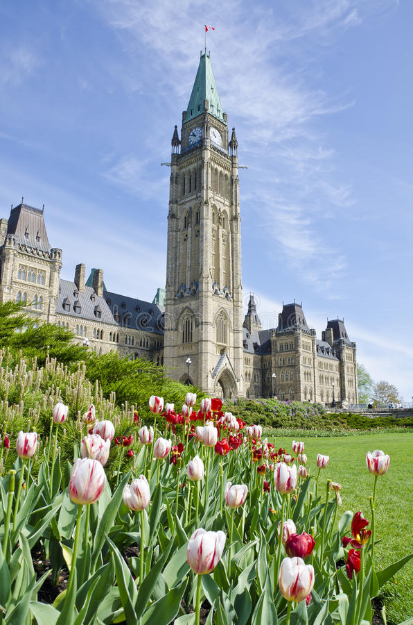Parliament Building Ottawa and Tulips #3 royalty free stock photos
