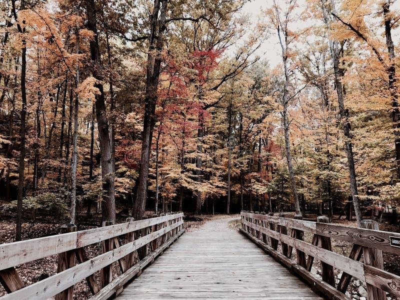 Parma, Ohio nowego parka i most biega Cleveland MetroParks, PARMA, OHIO - obrazy stock