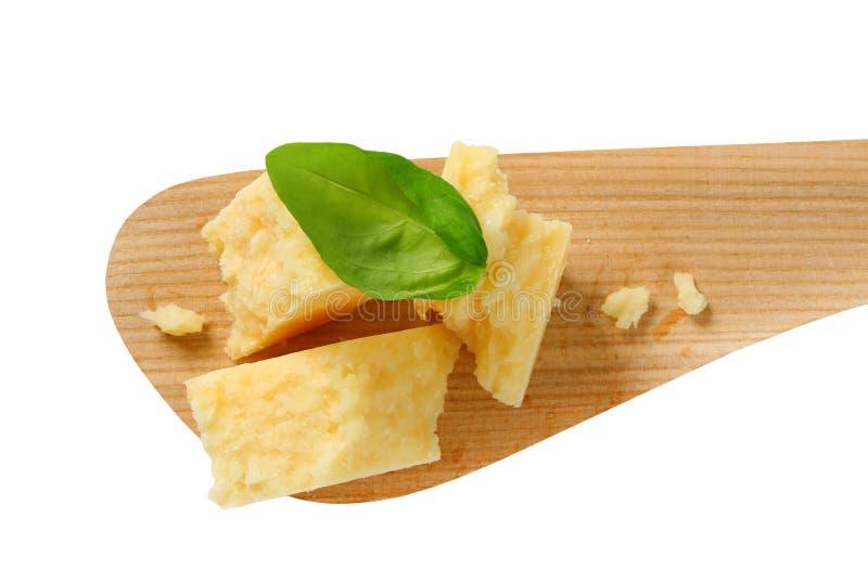 Parmesan photo stock