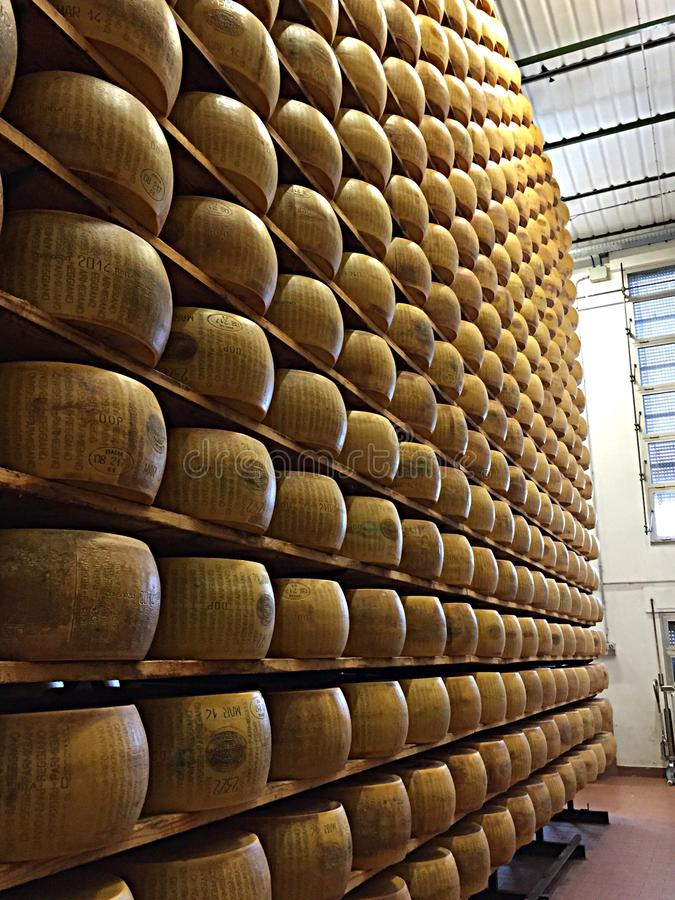 Parmigiano-Reggiano cheese. Parmesan cheese wheels aging in Parma stock photo