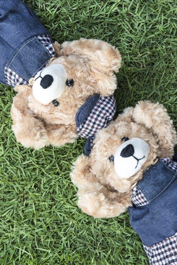 Parnallebjörnar vilar på gräsmatta royaltyfria foton
