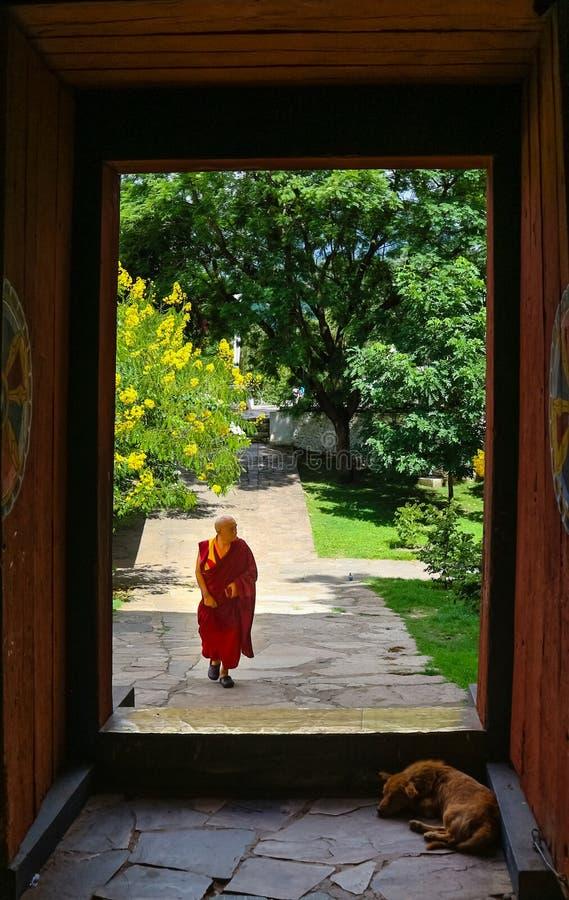 Paro, Μπουτάν - 10 Σεπτεμβρίου 2016: Bhutanese μοναχός που περπατά μέσω της πόρτας στο ναό Kichu Lhakhang στοκ εικόνες με δικαίωμα ελεύθερης χρήσης