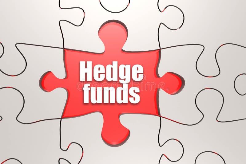 Parola dei hedge fund sul puzzle illustrazione di stock