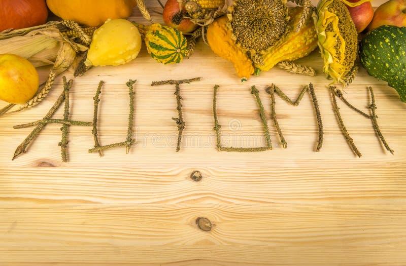 Parola di autunno e raccolto agricolo fotografia stock