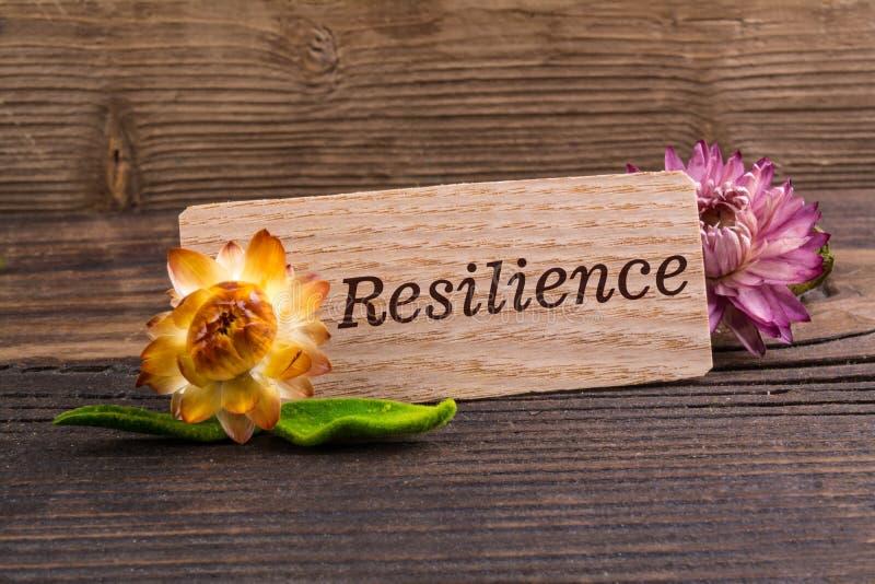 Parola di resilienza immagine stock libera da diritti