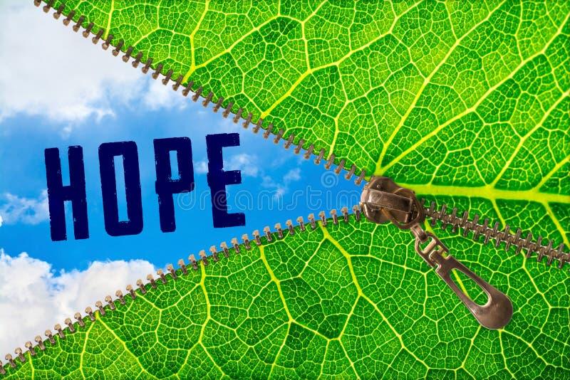 Parola di speranza sotto la foglia della chiusura lampo immagini stock libere da diritti