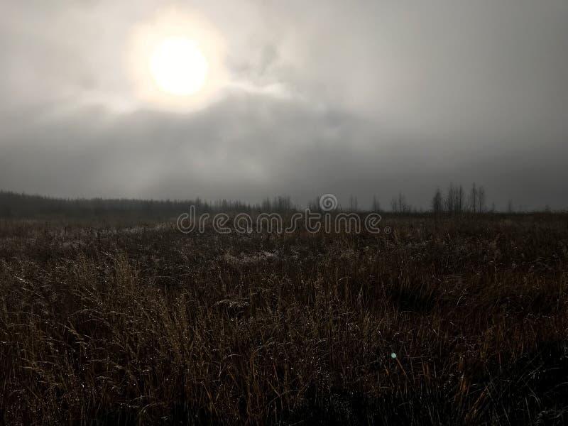 Parola in nebbia immagine stock
