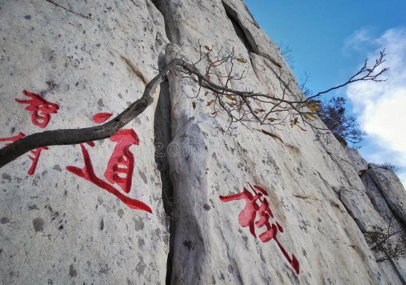 Parole della strada della plancia del Monte Song su roccia fotografia stock
