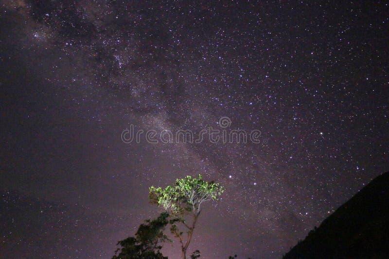 Paropo Vintergatan arkivbild