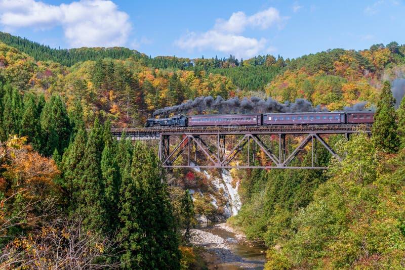 Parowej lokomotywy pociąg krzyżuje Takiya most na Tadami linii fotografia stock