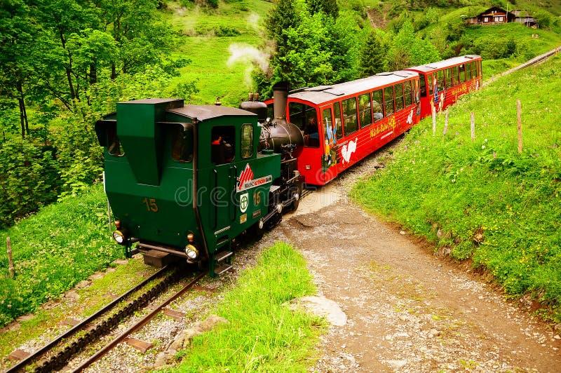 Parowy pociąg. obraz stock