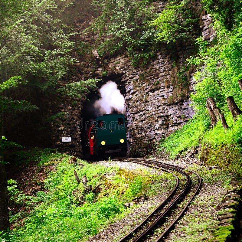 Parowy wąskiego wymiernika pociąg. zdjęcia royalty free